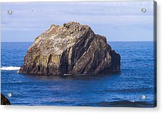 Acrylic Print featuring the tapestry - textile Face Rock by Dennis Bucklin