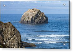 Acrylic Print featuring the tapestry - textile Face Rock Landscape by Dennis Bucklin