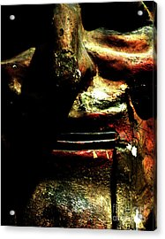 Acrylic Print featuring the photograph Face Time by Newel Hunter