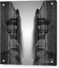 Face To Face Montage I Acrylic Print by Dave Gordon