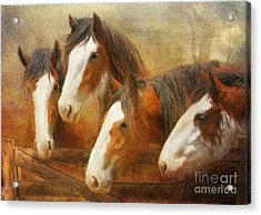 Faces Of Four Acrylic Print
