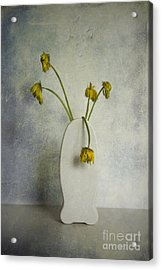 Withered Flowers Acrylic Print