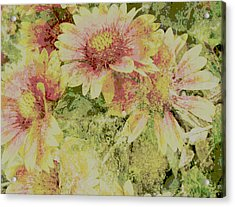 Faded Love Abstract Floral Art Acrylic Print by Ann Powell