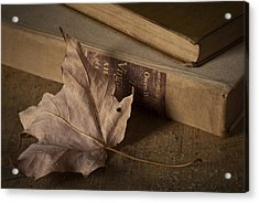 Fading Acrylic Print by Amy Weiss