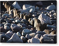 Fading Away Acrylic Print by Anne Gilbert
