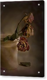 Fading Away Acrylic Print by Trevor Chriss