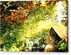 Acrylic Print featuring the photograph Fairies by HweeYen Ong