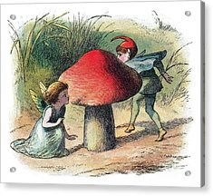 Fairy And Elf-legendary Creatures Acrylic Print by Photo Researchers