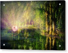 Fairy In Pink Bubble In Serenity Forest Acrylic Print