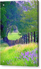 Fairy Tale Meadow With Lupines Acrylic Print by ARTography by Pamela Smale Williams