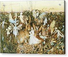 Fairy Twilight Acrylic Print