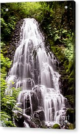 Acrylic Print featuring the photograph Fairy's Playground by Suzanne Luft