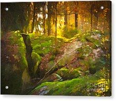 Fairytale Forest Acrylic Print by Lutz Baar
