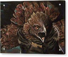 Falcon Opera  Acrylic Print by Peter Suhocke