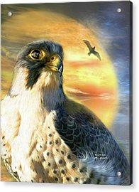 Falcon Sun Acrylic Print by Carol Cavalaris