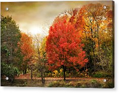 Fall Aflame Acrylic Print by Jessica Jenney