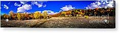 Fall All Around Acrylic Print by Mark David Zahn