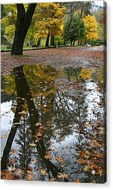 Acrylic Print featuring the photograph Fall All The Way by Marie Neder