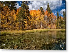 Fall Along Bishop Creek Acrylic Print by Cat Connor