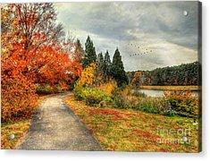 Fall Along Lake Nevin Acrylic Print by Darren Fisher