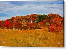 Acrylic Print featuring the photograph Fall Along The Highway by Andy Lawless