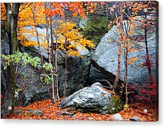 Acrylic Print featuring the photograph Fall Among The Rocks by Bill Howard