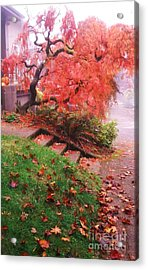 Fall And Fog Acrylic Print by Suzanne McKay
