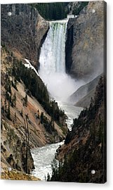 Fall And Stream In Yellowstone Acrylic Print
