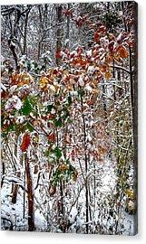 Fall And Winter Acrylic Print