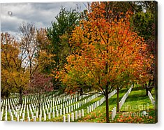 Fall Arlington National Cemetery  Acrylic Print