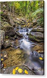 Fall Arrives At Amicalola Falls Acrylic Print