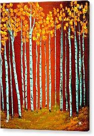 Fall Aspen Acrylic Print by Antonia Citrino