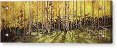 Fall Aspen Panorama Acrylic Print by Gary Kim