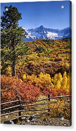 Fall At Dallas Divide Acrylic Print