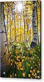 Fall At Silver Lake Acrylic Print