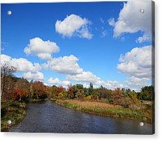 Fall At The Credit River Acrylic Print by Pema Hou