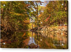 Fall At Valley Creek  Acrylic Print by Rima Biswas