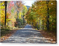 Fall Backroad Acrylic Print