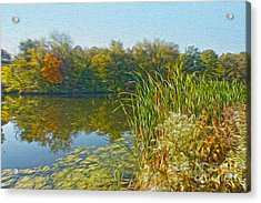 Fall By The River Acrylic Print by Nur Roy