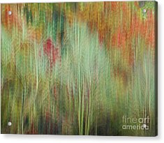Fall Color Abstract 2 Acrylic Print