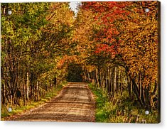 Acrylic Print featuring the photograph Fall Color Along A Dirt Backroad by Jeff Folger