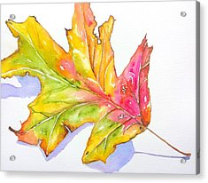 Fall Color Leaf With Shadow	 Acrylic Print