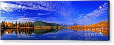 Acrylic Print featuring the photograph Fall Color Oxbow Bend Grand Tetons National Park Wyoming by Dave Welling