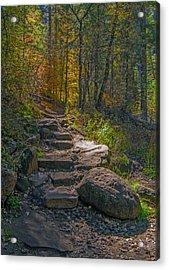 West Fork At Oak Creek Acrylic Print