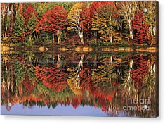 Acrylic Print featuring the photograph Fall Color Reflected In Thornton Lake Michigan by Dave Welling