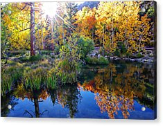 Fall Color Reflection Along Bishop Creek Acrylic Print