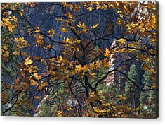 West Fork Tapestry Acrylic Print
