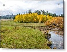 Fall Colorado Acrylic Print by Baywest Imaging