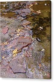Fall Colors 6443 Acrylic Print