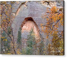 Fall Colors 6482 Acrylic Print